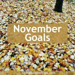 My November Goals